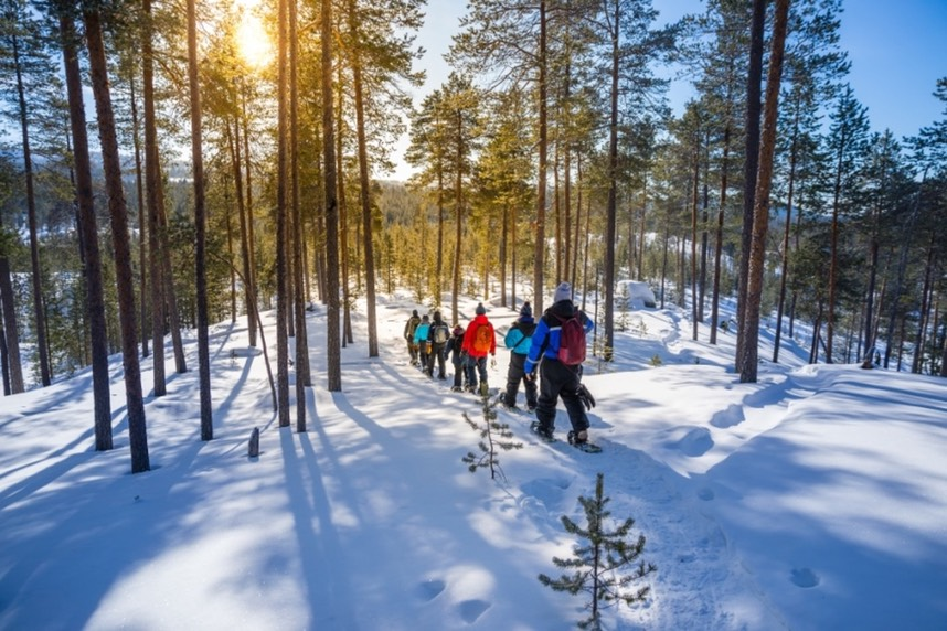 Snowshoeing wildernesshotels